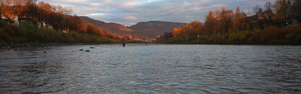 Herbstfoto.jpg
